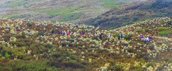 Visita Parque Nacional Natural Chingaza