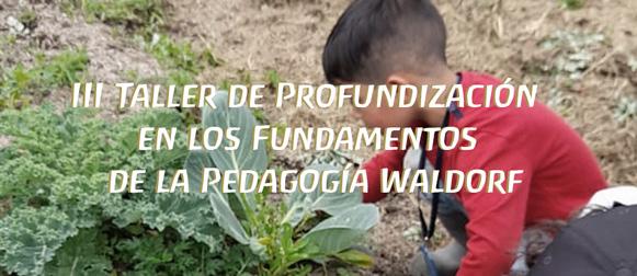 III Taller de Profundización en los Fundamentos de la Pedagogía Waldorf